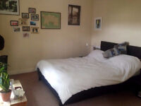 Lovely Double Room To Rent For 6 Months