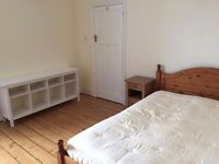 Large furnished double bedroom for single professional in friendly quiet spacious house
