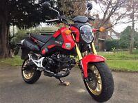 "Honda MSX 125 ""The Honda Grom"" Amazing Condition"