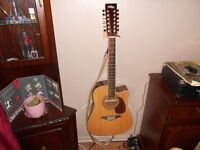 12 string electro acoustic guitar swap for electric guitar
