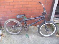 BMX bike (Salt?)