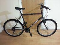 SHANIKO Mountain bike with 26 wheel size