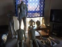 Mannequin assorted £50 the lot