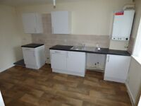 Byker,Newcastle upon Tyne. Brand new refurbished 2 Bed Modern House.Consevatory.No Bond!DSS Welcome!