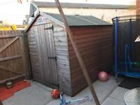 6x8 ft. Shed
