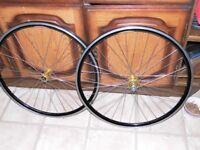700c bike wheels hope pro 3 III hubs on rims XC279 7 8 9 10 speed shimano new bearings fitted
