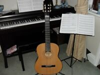 Burswood full size classical guitar complete with carry bag,