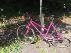 Woman's bike. Needs TLC