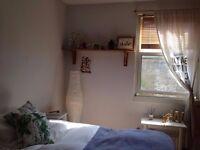 Lovely large double room short term September Dalston, Hackney, Stoke Newington