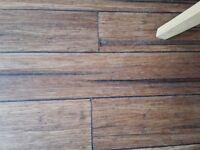 Laminate Floor - believe to be wood