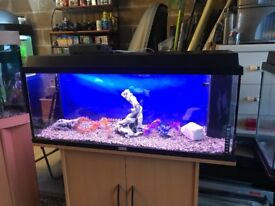 3.5ft Juwel fish tank full set up with stand heater filter 1 light gravel nice ornament all work