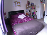 King size bed for sale!