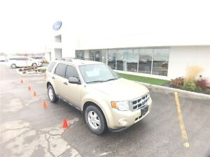 2012 Ford Escape XLT, Gas and Go, Local trade, Car starter!!! Windsor Region Ontario image 3