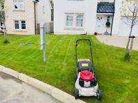 Gardener, gardening, grass cutting services, hedges, property maintenance
