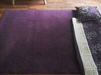 Purple rug, curtains, cushions, and lamp