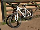 Cube Access WLS Women's Mountain Bike.  New, Unsuitable Gift.