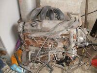 ford escort 1.8 diesel engine