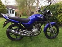 2008 (58) YAMAHA YBR 125 Very good condition. A great little bike; it rides and runs well.