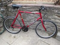 Mens Raleigh Limited Edition Bicycle Quaser Hybrid Road Mountain Bike full working order