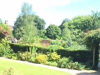 RGS Garden Open Day, at George Thomas Hospice Care Grounds