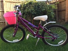 Girl kid bike 16""