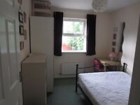 Double furnished room to rent in Stoke Park