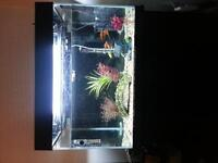 fish tank with cabinet & fish with all accessories