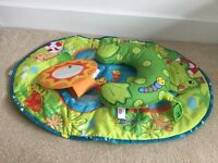 Tiny love tummy time frog mat
