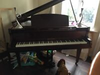 Dale Forty Baby Grand Piano