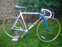 Retro Raleigh racer