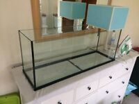 3x1x1 fishtank with Lid