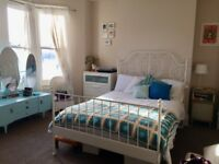 Large bedroom available to rent in lovely shared house, Roath