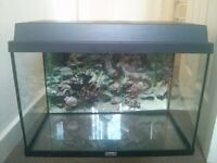 2ft Juwel Fish Tank