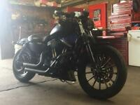 883 Iron 2011 Harley Davidson sportster