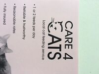 Care 4 Cats - local cat feeding service