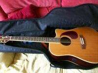 Takamine Jasmine Electro acoustic guitar with accessories