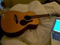 Alvarez RF8 Acoustic Folk Guitar