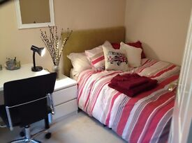 Large Double Room (16 x 8) in Modern House, 2 bathrooms, 2 lounges - close to uni and town centre