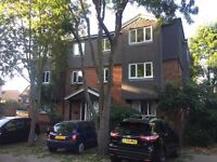To rent, One Bedroom Newly Refurbished Flat