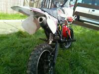 50cc scrambler for sale