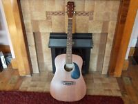 Hohner Electro Acoustic Guitar (HW-300)