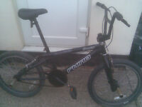 Rhino FreeFall Junior Stunt Bike with front and back pegs