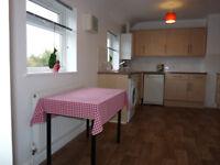 1 bedroom flat for rent (Filton/Northville)