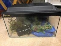 Clear Seal Fish Tank with Fluval Filter & Accessories