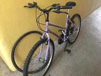 Ladies bike and D-lock