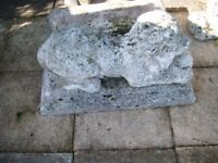 2 MATCHING GARDEN CONCRETE LIONS ON BASES