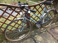 Vintage Raleigh wispb4 ladies bike