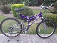 Women's excel panache mountain bike