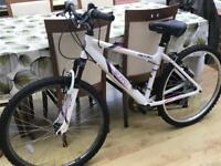 Ladies bike immaculate condition - collection only