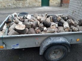 Well seasoned logs for sale, ideal for wood burners